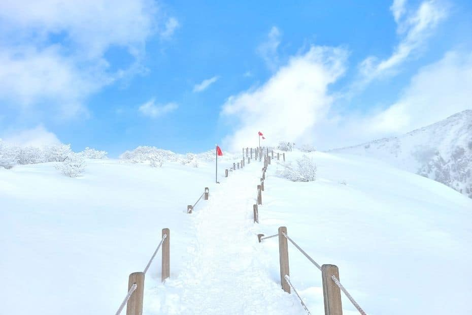 Snowy Slopes of Hallasan, which you can see during 1 week on Jeju Island in winter