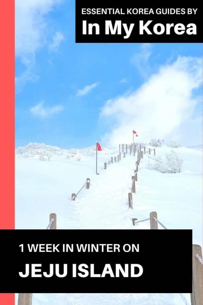 1 Week On Jeju Island in Winter Pin 1