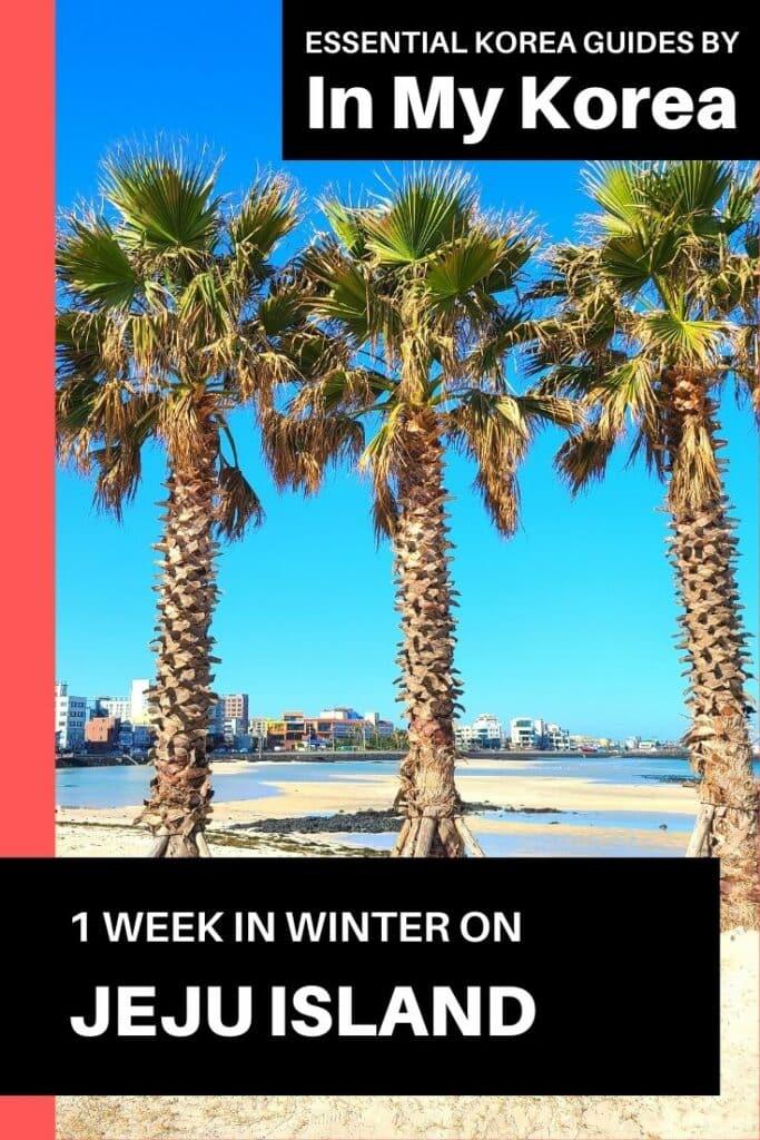 1 Week On Jeju Island in Winter Pin 2