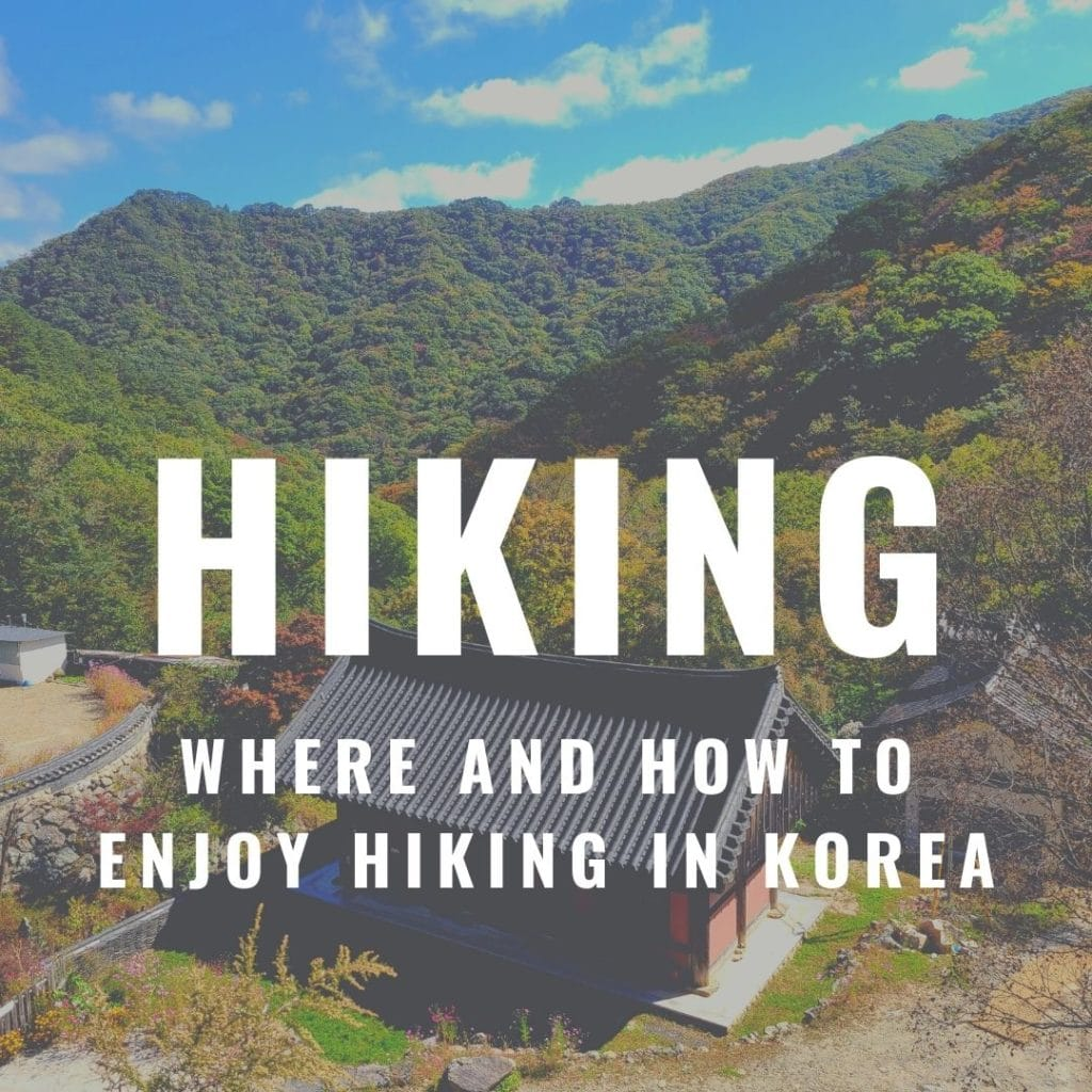 Hiking guides on In My Korea