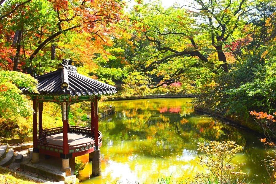 Autumn leaves at the Secret Garden in Seoul