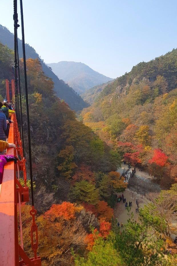 Suspension bridge at Gangcheonsan Mountain, Sunchang