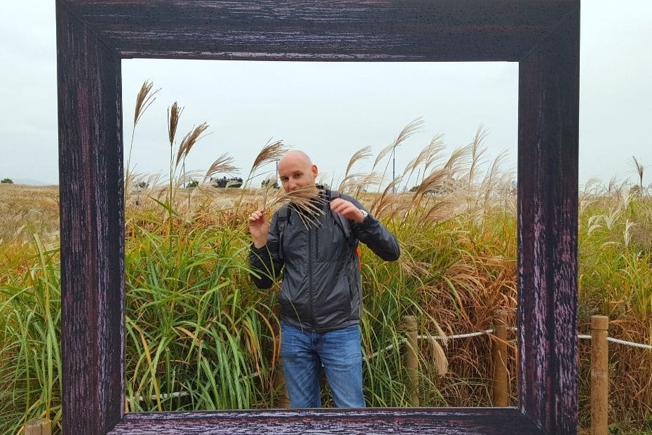Picture frame and reeds at Haneul Park, Seoul