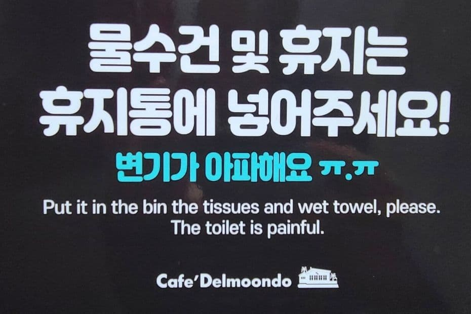 Warning sign about how to use the toilet